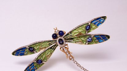 Salzburg Guide Shopping - Juwelier Salzburger - Libelle
